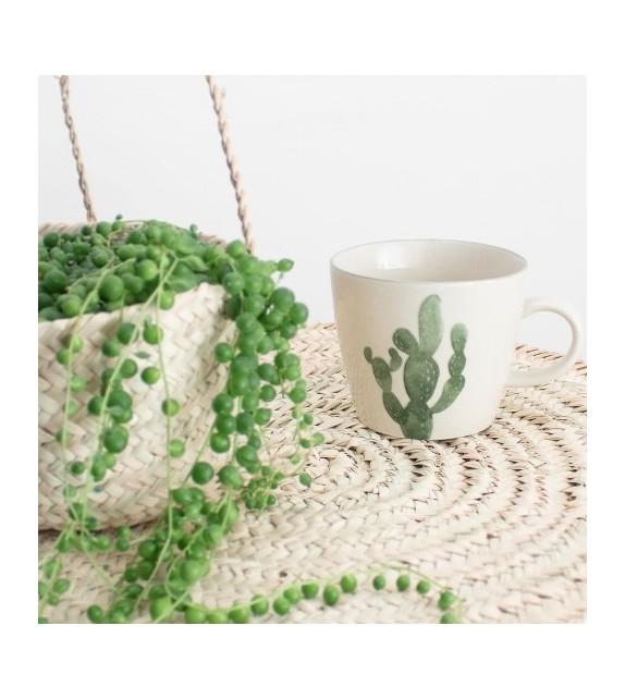 Mug cactus